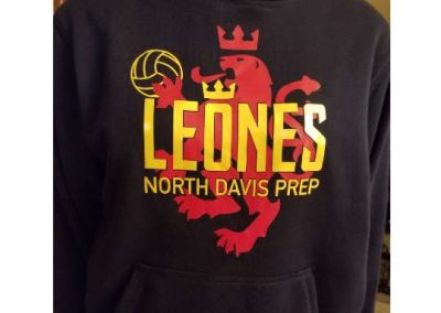 NDPA Leones volleyball team performance hoodies - 2-color vinyl heat press